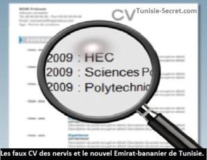 Les faux CV des nervis et le nouvel Emirat-bananier de Tunisie.