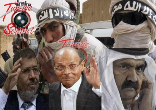 Tunisie, Qatar et Egypte, contre l'action française au Mali
