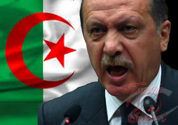 Après son échec en Syrie et en Egypte, Erdogan veut allumer l'Algérie