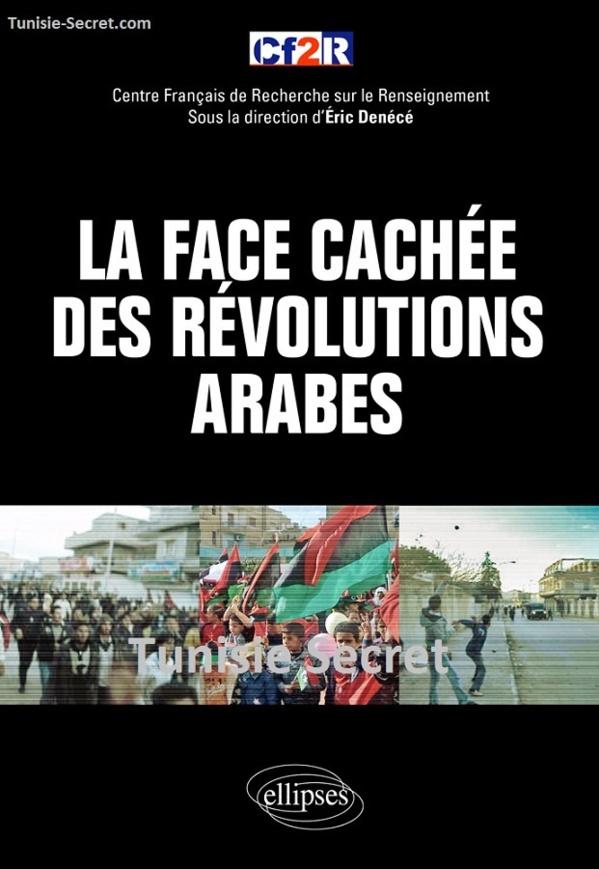 """Couverture du livre collectif """"La face cachée des révolutions arabes"""", édition Ellipses, Paris, 2012."""