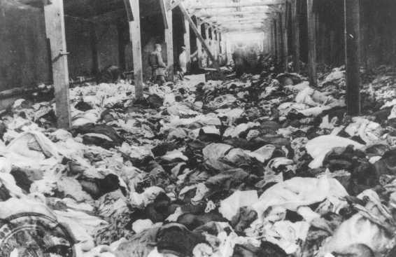 Les Musulmans grands absents d'Auschwitz