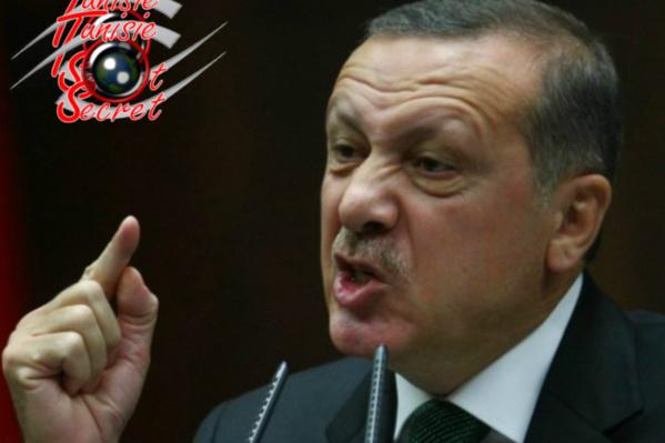 Recep Tayyip Erdogan, ami de Daech, ennemi du PKK !
