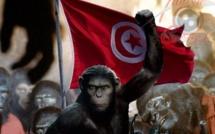 Révolution du jasmin et théorème du singe